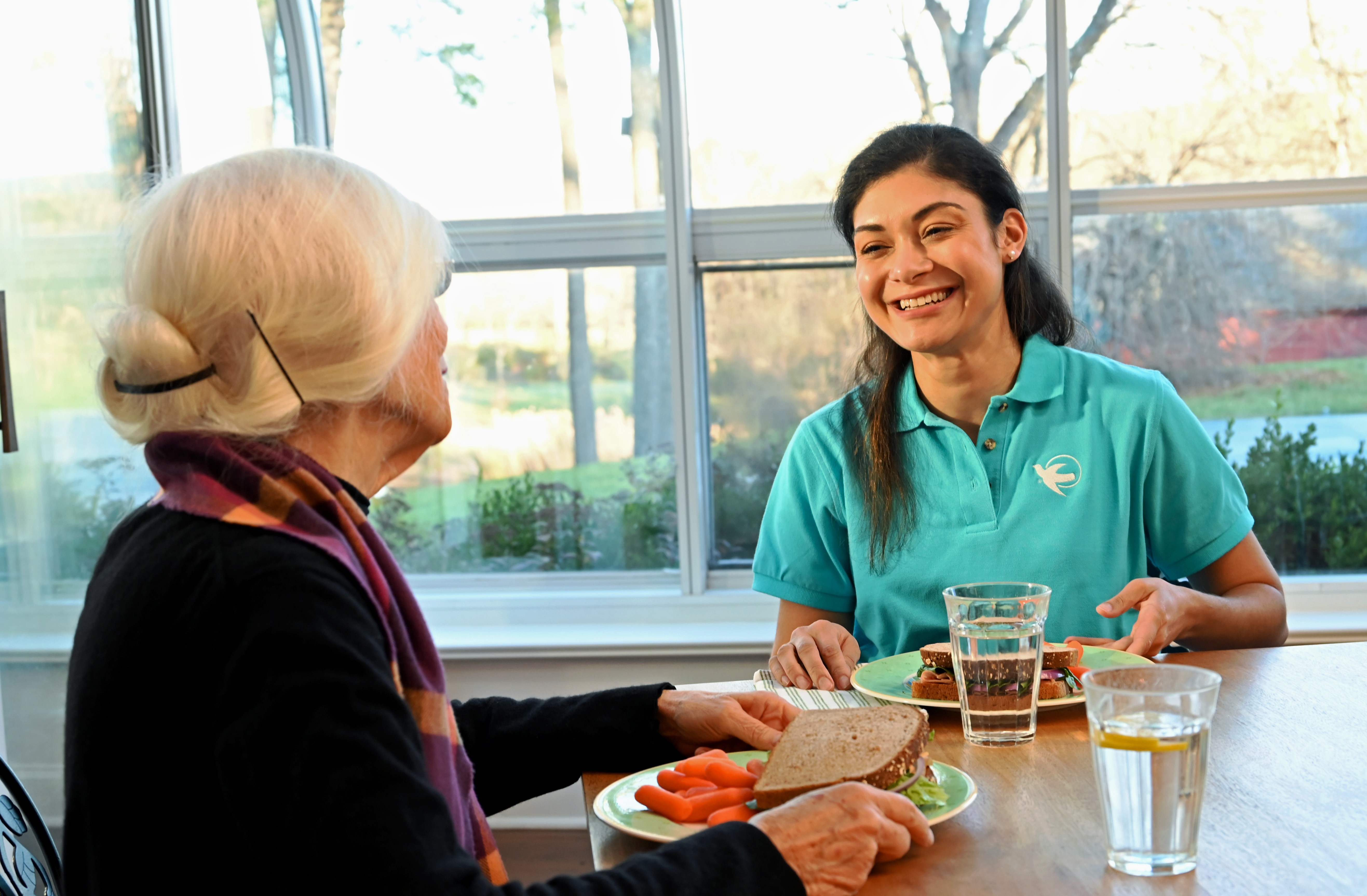 Malnutrition in Senior Health and the Causes