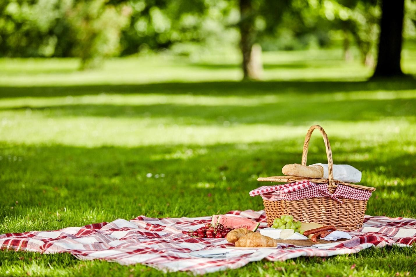 Elevating Your Picnic