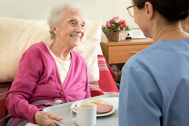 Senior Home Care Services in the Great Lakes Bay Area of Michigan